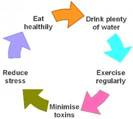 What exactly Healthy Lifestyle mean