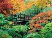 Gemini Rising Monthly Astrological Forecast October 2012
