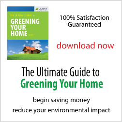 The Ultimate Guide to Greening your Home