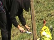 Mississauga Private Investigator Catches Vandal Wrecking Roadside Memorial
