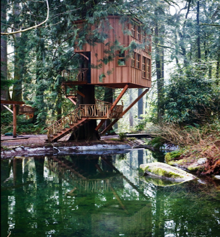 treehouse point Eco Day ~ Tree House Hotel Designs HomeSpirations