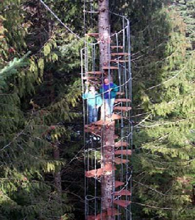 cedar creek spiral staircase1 Eco Day ~ Tree House Hotel Designs HomeSpirations