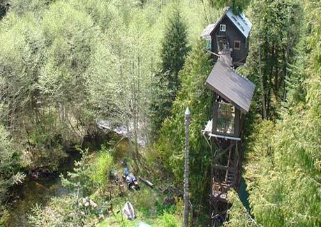 Cedar Creek Eco Day ~ Tree House Hotel Designs HomeSpirations