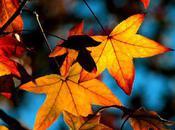 Seasons Change,so Should Your Regimen