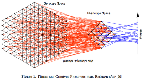 Genotype-phenotype maps and mathy biology