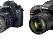 Nikon D600 Canon That Question