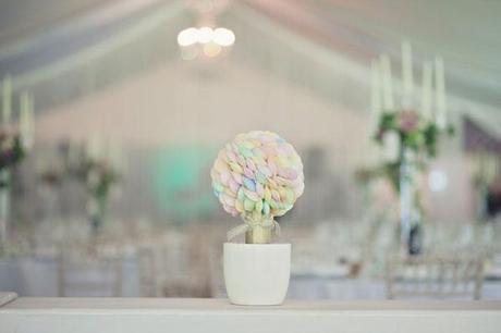 Vintage wedding Thrumpton Hall Lifeline Photography (17)