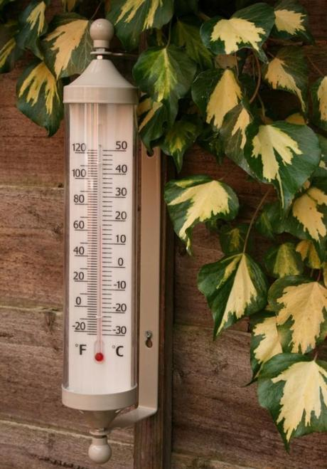 Garden Trading Outdoor Thermometer