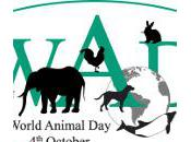 World Animal 2012