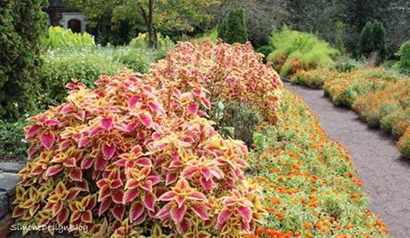 durham9 2012 007 The Beauty of Garden Design HomeSpirations