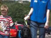 Support Dogs: Seizure Alert Dogs