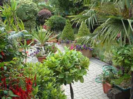 Modern Concepts for Garden Renovation