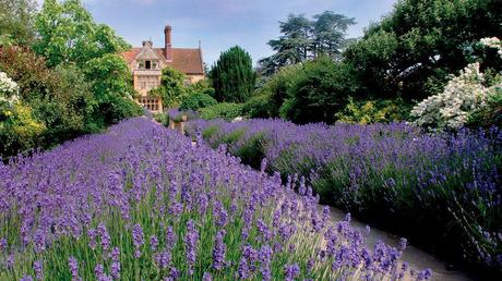 Kiwi Collection - Le Manoir aux Quat'Saisons, UK