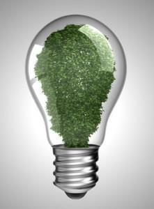 Renewable energy. Lightbulb with green plant