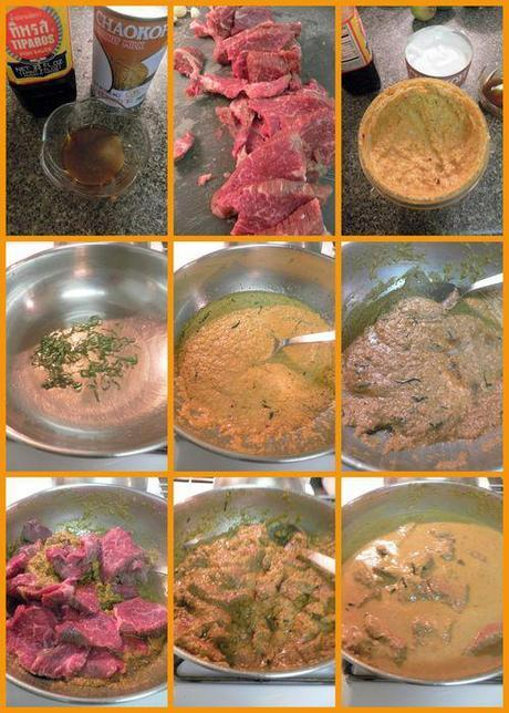Malaysian Panang Curry - curry collage