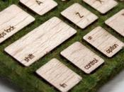 Mossy Take Apple's Wireless Keyboard