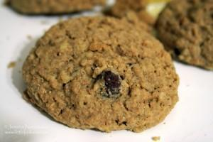 Best Cookie Recipes: Chocolate Chip Oatmeal Cookies