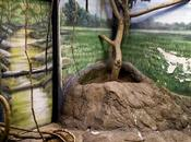 Artificial World Habitats