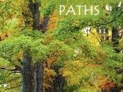 Book Review Whispering Paths