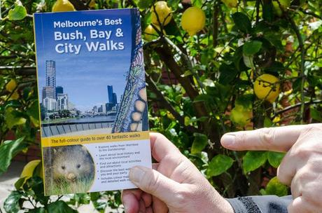 holding book melbourne's best bush, bay and city walks by julie mundy