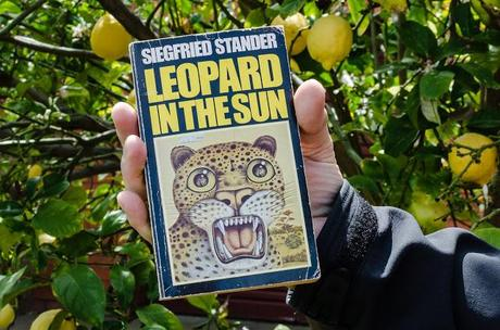 holding book leopard in the sun by siegfried stander