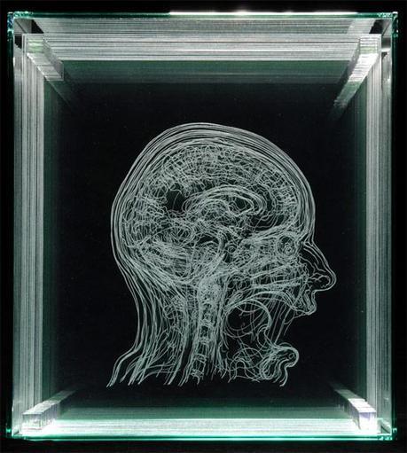 Angela Palmer self portrait MRI etching glass layers