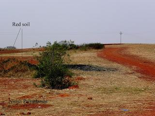 Soil colour has been inferred as an indicator of past climate.