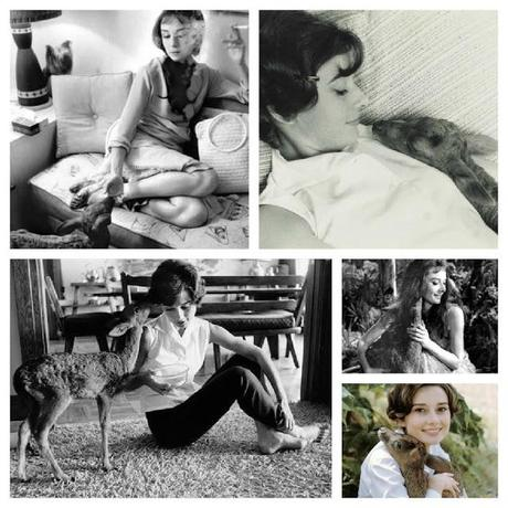 My Favourite Audrey Hepburn Books