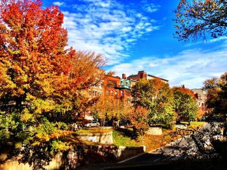 Fall Revelations in Boston