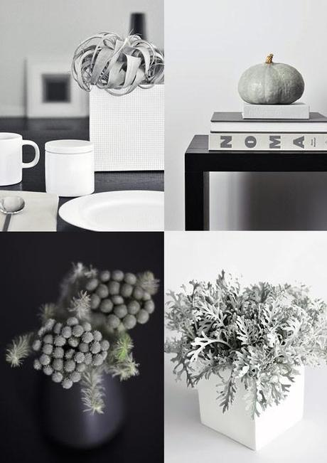 Interior gardens: it's a grey and white world