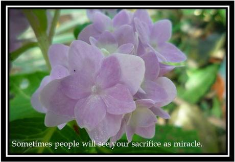 Can you make a SACRIFICE?