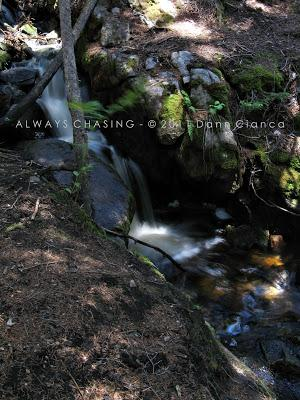 2011 - July 20th - Family Vacation Day 2 - Cascade Falls, Rocky Mountain National Park