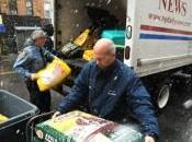 Daily News Hurricane Sandy Relief Effort Goes Dogs…Literally