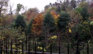 Autumn colours, water of leith, Edinburgh