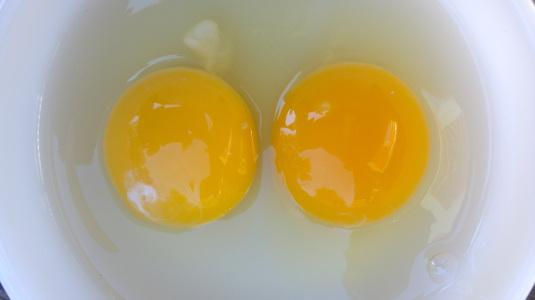 Lesson 650 – Comparing a store bought egg to a free range egg
