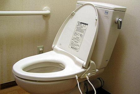 Is The Toilet Seat Really The Dirtiest Place In The Home?