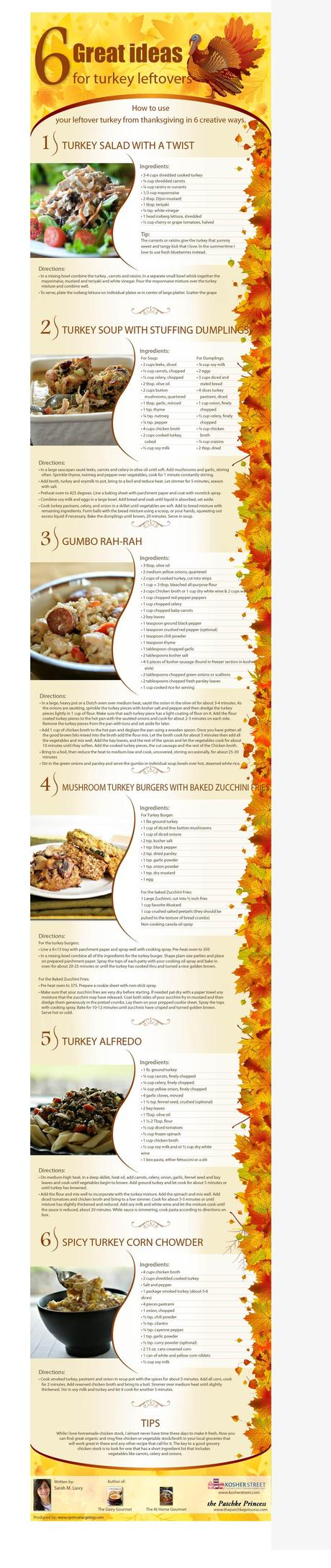 6 Recipes For Leftover Turkey Infographic