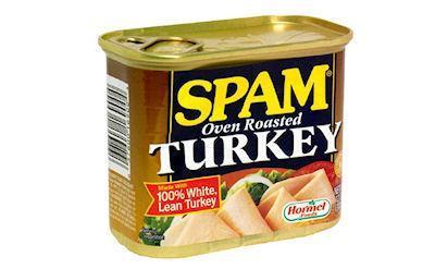 Ten Ingenious Ways Not To Serve Turkey This Thanksgiving
