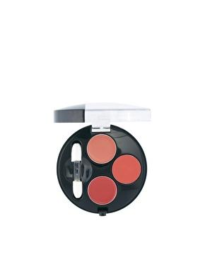 Bourjois Colorissimo Lip Palette (£7.99)