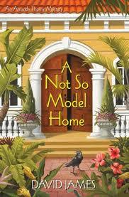 Review:  A Not So Model Home by David James
