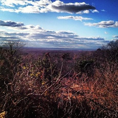 Gorgeous Winter Montauk.  (at Hither Hills West Outlook)