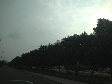 20121125-005425.jpg