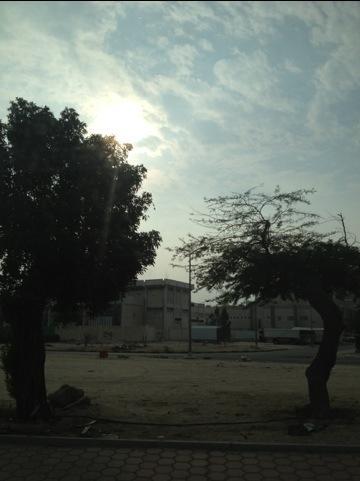 20121125-005504.jpg