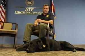 Top Denver Bomb Dog Retires As Handler Moves To Civilian Post