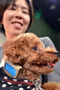 How Does Your Dog Feel? Fujitsu May Know
