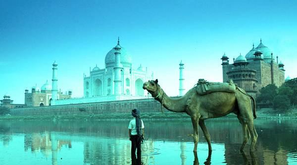Travels to India