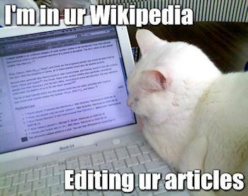 Lolcats: Where They Came From And Why We Love Them