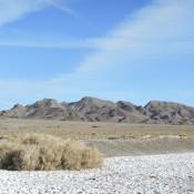The Desert near Tonopah NV