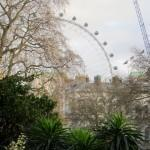 London Eye from St James Park
