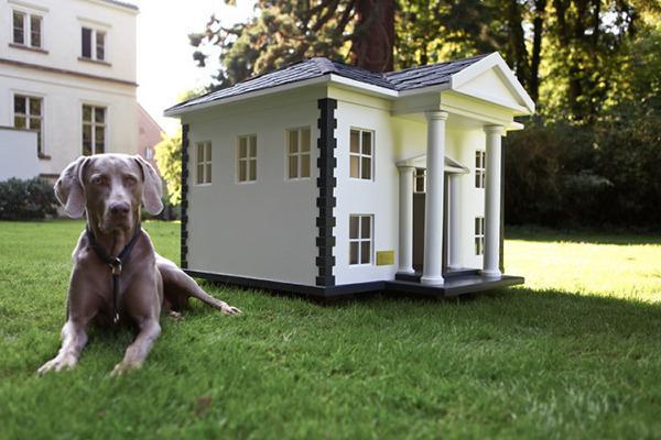 beautiful dog house - Beautiful Dog Houses